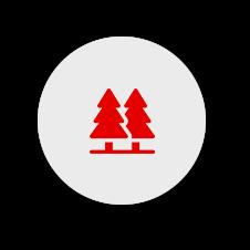 004-tree
